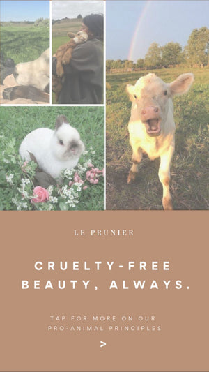 Cruelty Free Beauty, Always