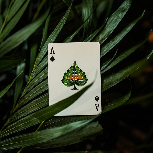 1st Playing Cards V3 by Chris Ramsay Bermuda Jungle Mural 3-Decks