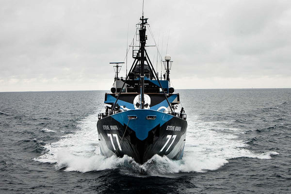 Sea Shepherd Playing Cards Ellusionist ~ Fight for our Seas