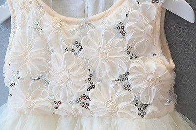 Lace & Roses Dress