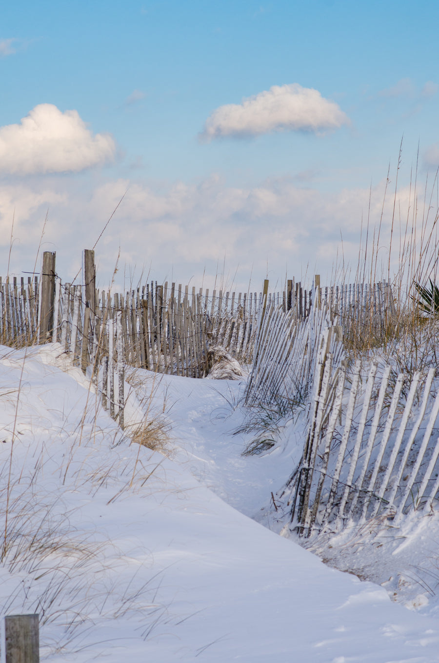 Snow Covered Beach Access - Mission Art OBX