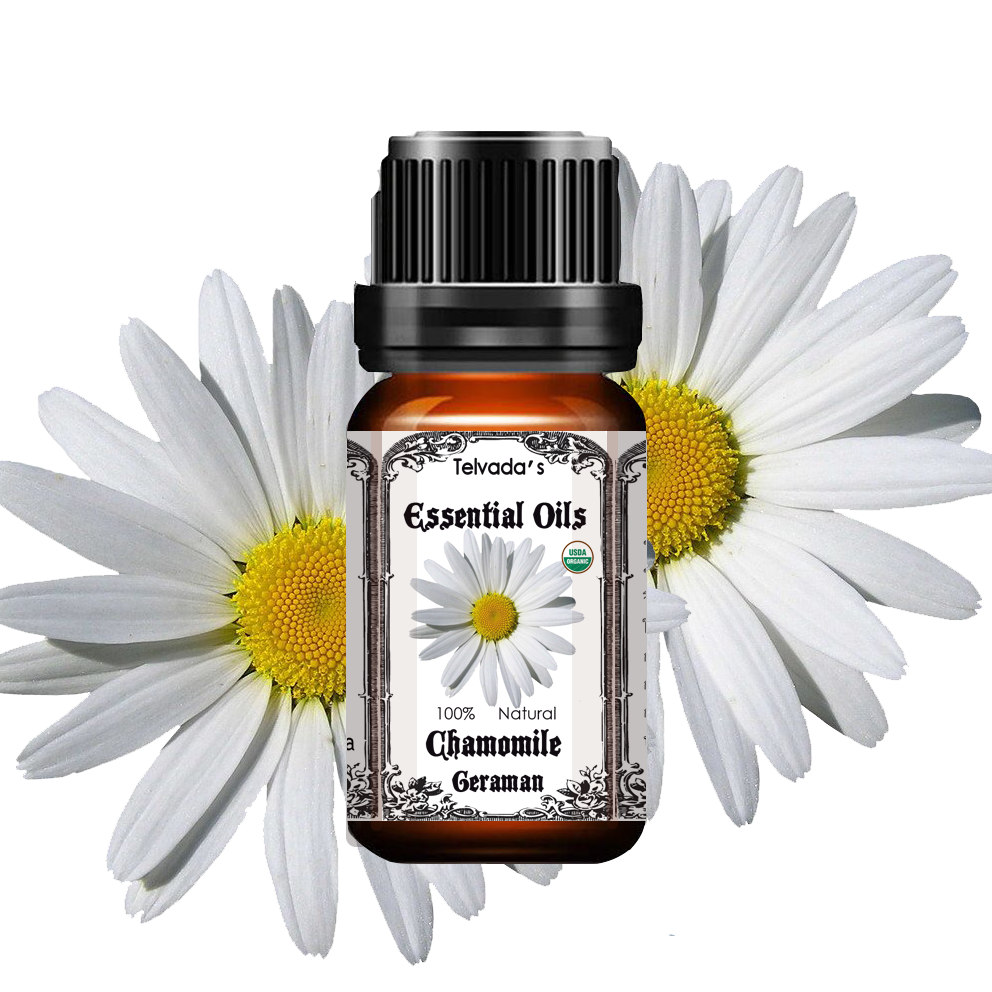 german chamomile essential oil telvada essential oils
