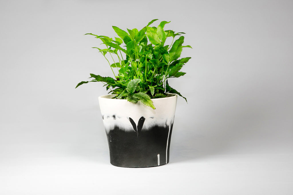Capra Designs Dipped Black & White mini pot