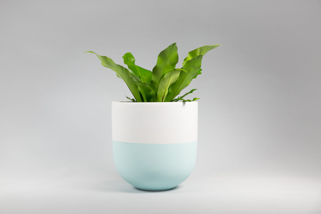 Ice Blue and White Concrete Pot