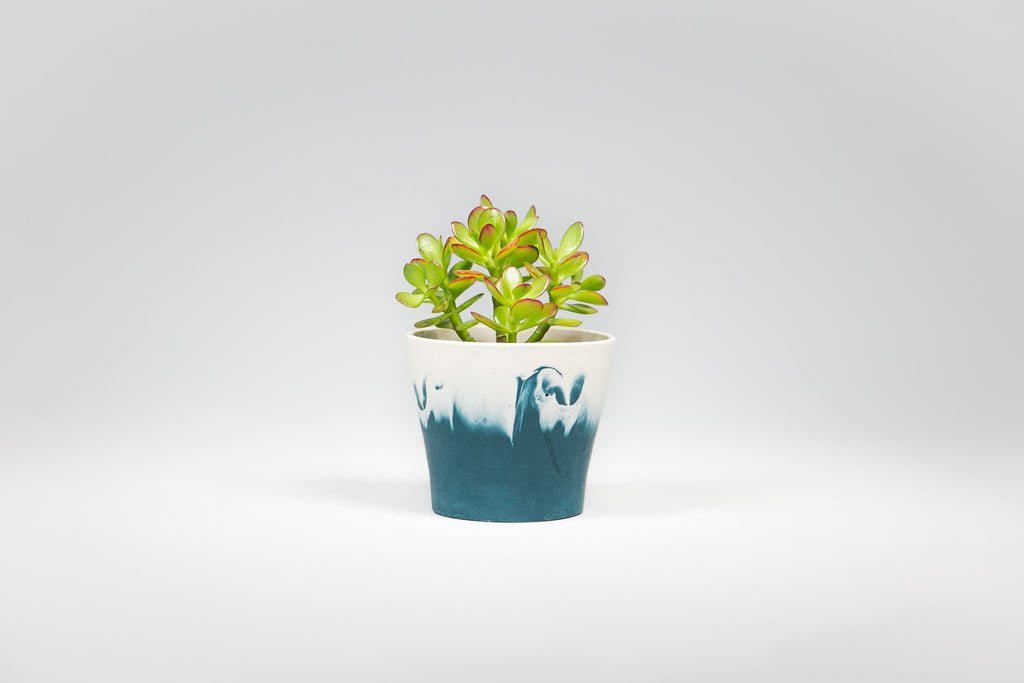 Capra Designs Dipped Navy and White mini pot