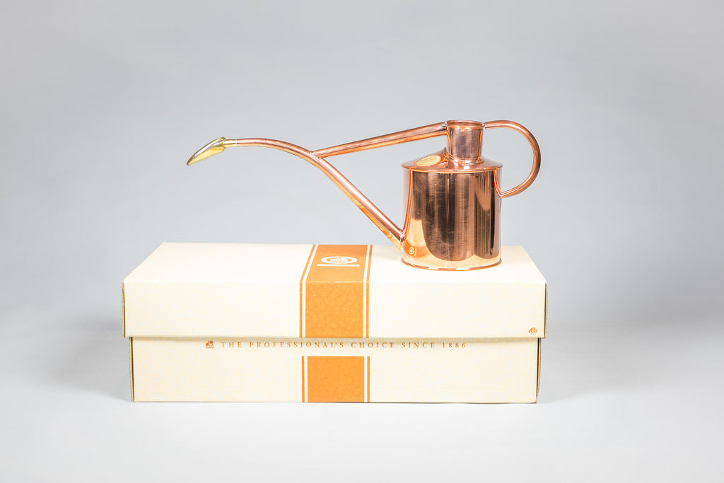 Haws 1 Litre Copper Watering Can Gift Box