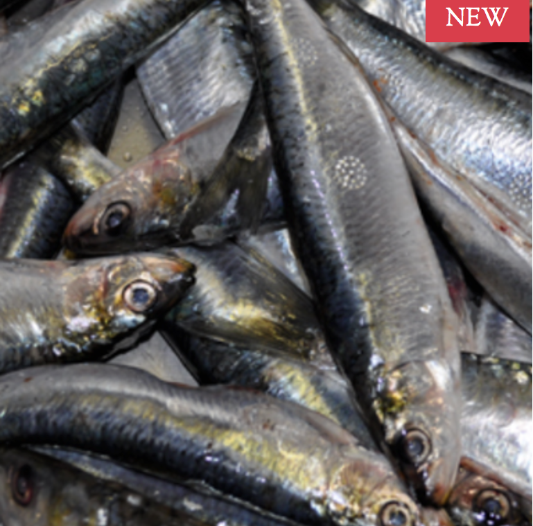 Fish (Whole oily) 1kg