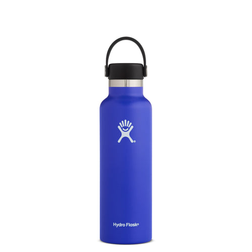 Hyrdo Flask 21 oz Standard Mouth - Blueberry // Futureproof.life (perspective)