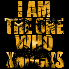 Who Knocks - Breaking bad tshirt in india cash of delivery