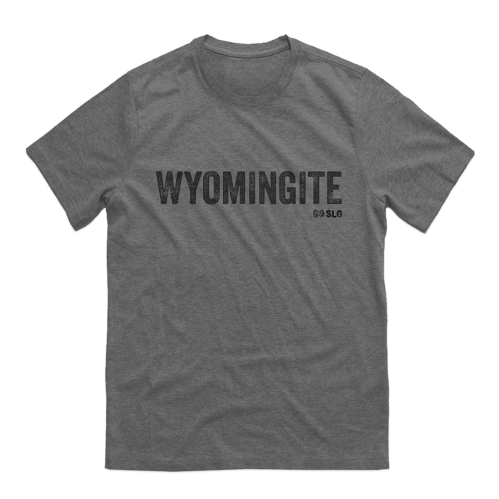 GUYS WYOMINGITE TEE