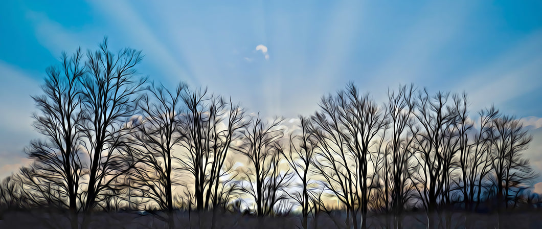 Tree Silhouette Painting
