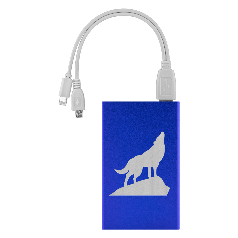 power bank charger Royal Blue buy from algarve online shop