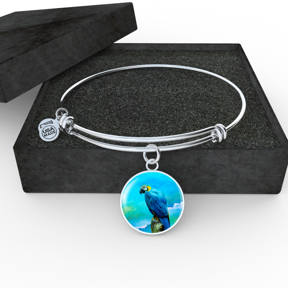 bangle silver parrot