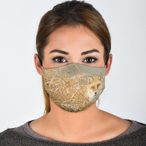 Fox Reusable Face Mask With Filter