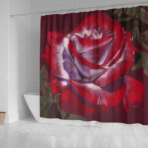 bathroom curtain shower rose