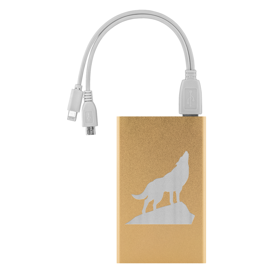 power bank charger gold algarve online shop