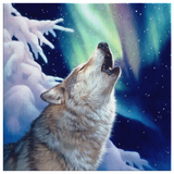 Wolf Canvas Holy Night Algarve Online shop