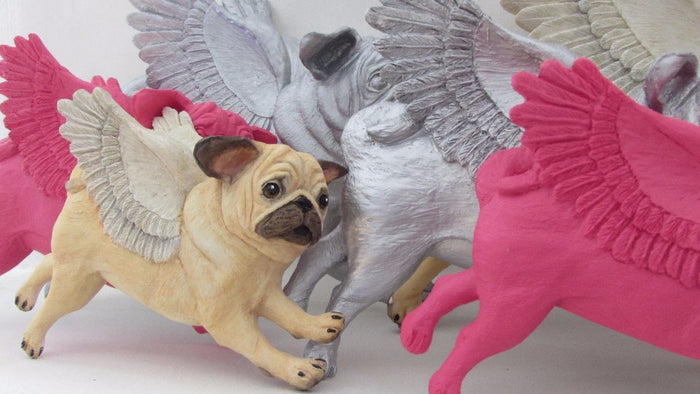 The Flying Pugs