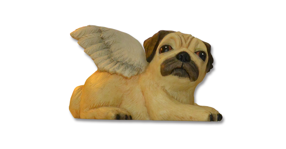 Pugs might fly Money Box Real Fawn Biddy Pug Money Boxes