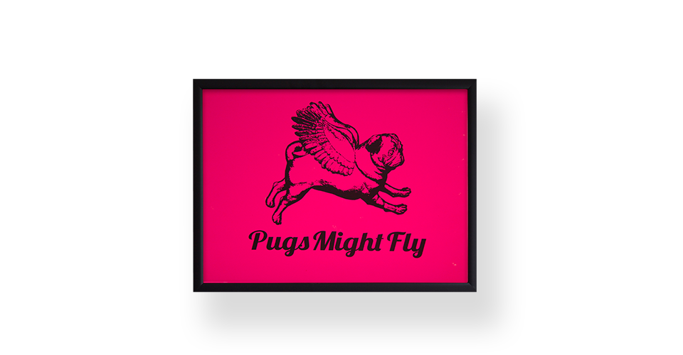 Pugs might fly Poster Pink Poster Board