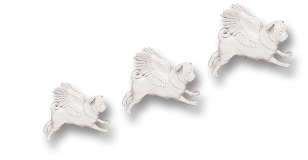 Pugs might fly Wall Hangings Set of 3 White Pug Wall Hangings