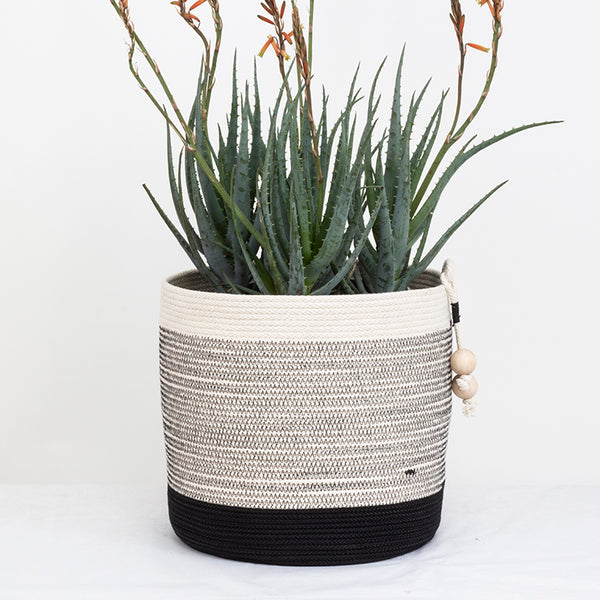 planter basket in cotton rope basket