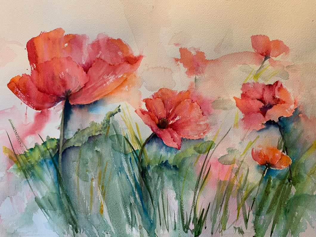 Watercolor: Spring Poppies