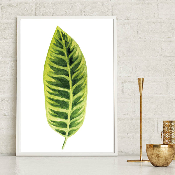 Botanical Leaf Watercolour Poster