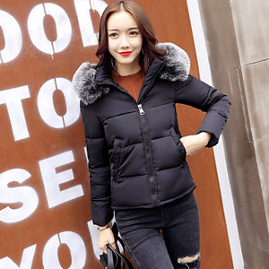 Women Big Fur Collar Warm Hooded Autumn Winter Jacket (wo1)