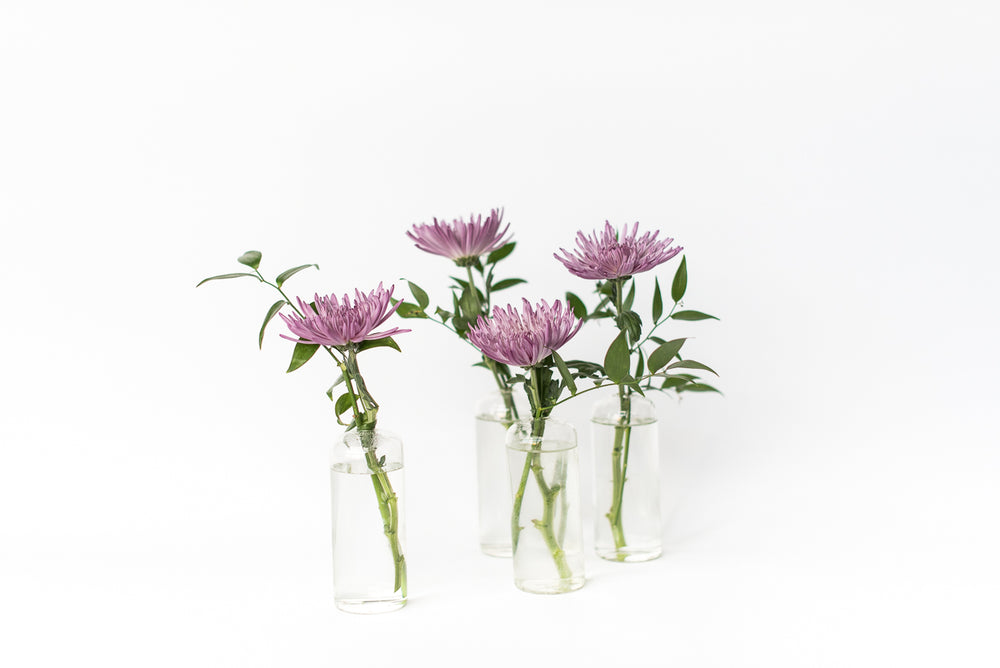 Eclipse Bud Vase Set