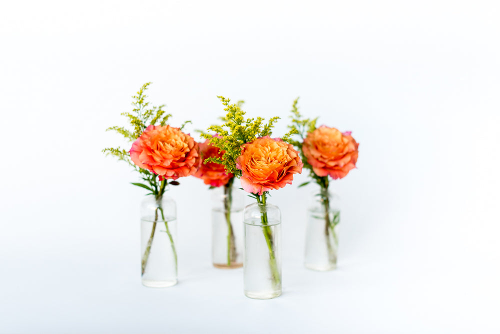 Citrus Bud Vase Set