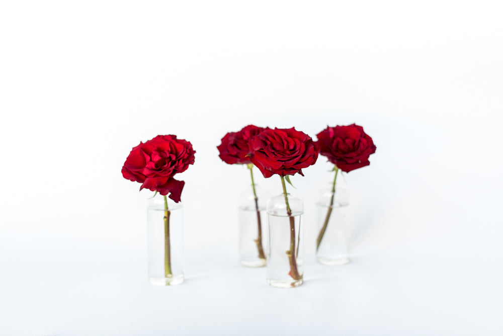 Load image into Gallery viewer, Velvet Bud Vase Set