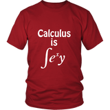 Calculus Is Sexy Shirt