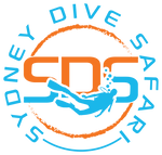 Sydney Dive Safari