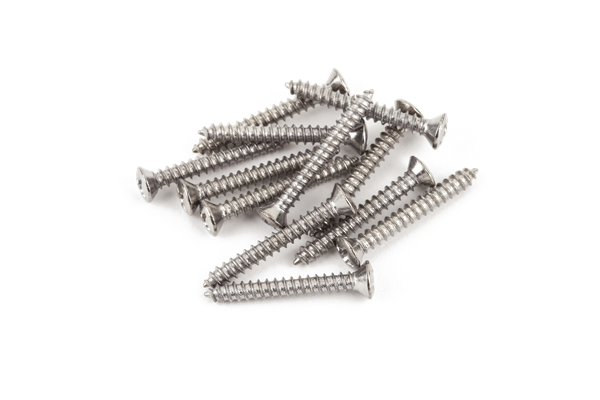Bass/Telecaster® Bridge/Strap Button Mounting Screws, Phillips-Head, Chrome, (12)