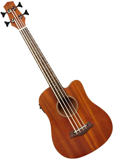 Gold Tone Fretless Micro Bass With Bag