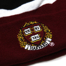 Harvard Crest Striped Beanie (Crimson)