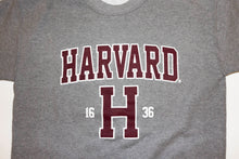 Harvard Sweatshirt (Gray)