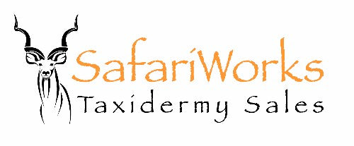 Safariworks Taxidermy Sales