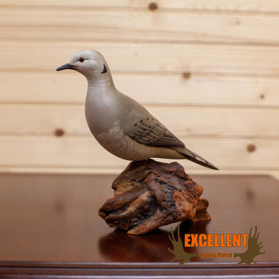 hand painted dove statue SafariWorks Decor