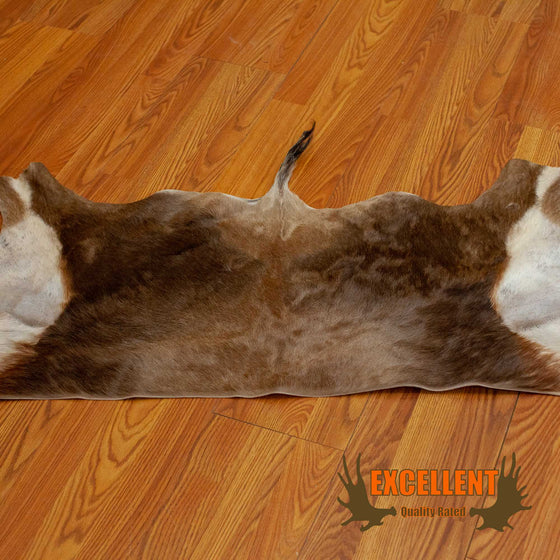 blackbuck back skin hide