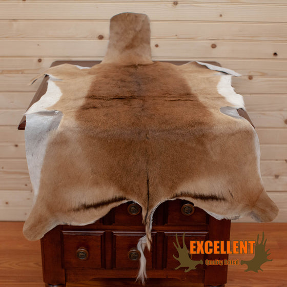 Impala Tanned Hide - SW10225