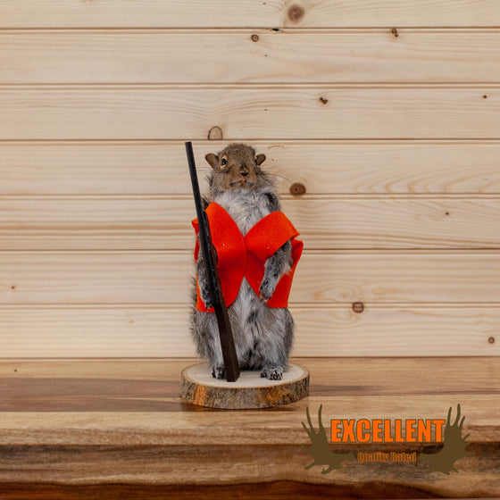 hunter hunting gray squirrel taxidermy mount for sale