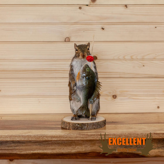 fishing fisherman squirrel taxidermy for sale