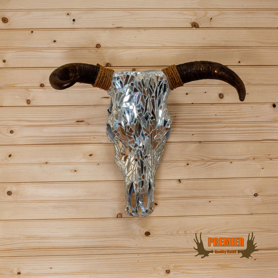 rustic chic steer skull mount with horns for sale