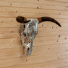 Decorated Horned Steer Skull Wall Mount SW10319