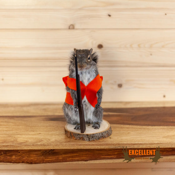 hunting squirrel novelty gift taxidermy mount for sale