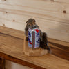 Drunk Squirrel Taxidermy Mount SW10356