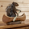Gray Squirrel Paddling a Canoe Taxidermy Mount SW10392