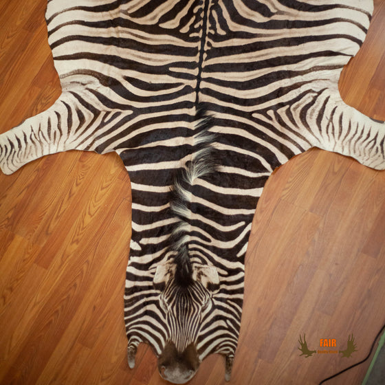 zebra skin rug hide for sale safariworks decor